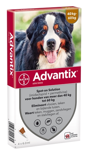 BAYER ADVANTIX SPOT ON 600/3000 40+ KG - 4 PIP